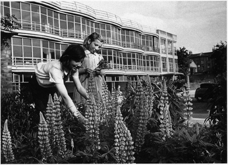 Image shows girls tending to plants outside the Pioneer Health Foundation
